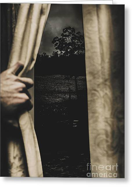 They Wait Outside Greeting Card by Jorgo Photography - Wall Art Gallery