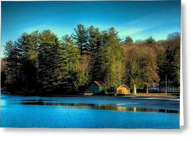 Thin Ice Forming At The Pond Greeting Card by David Patterson