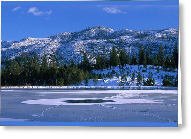 Thin Ice - Johnsondale Lake Greeting Card by Soli Deo Gloria Wilderness And Wildlife Photography