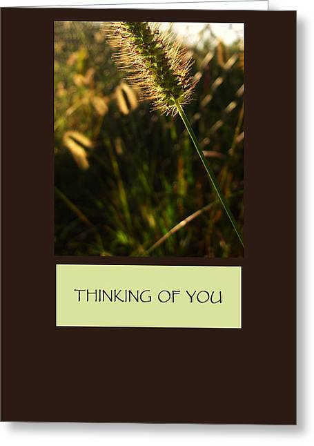 Thinking Of You Greeting Card by Mary Ellen Frazee