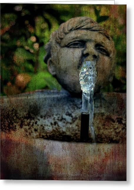 Thirsty Garden Art Greeting Card by Lesa Fine