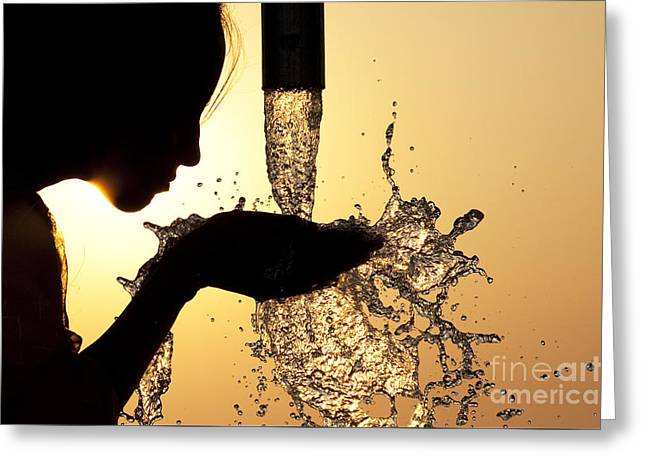 Thirsty Greeting Card by Tim Gainey