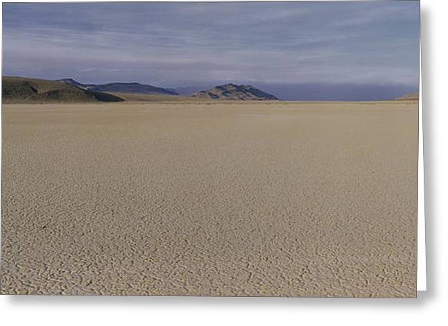This Is A Dry Lake Pattern Greeting Card by Panoramic Images