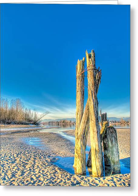 This Is British Columbia No.43 - Frost On The Fraser Greeting Card by Paul W Sharpe Aka Wizard of Wonders