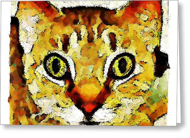 This Is My Surprised Face Kitty Greeting Card by Terry Mulligan