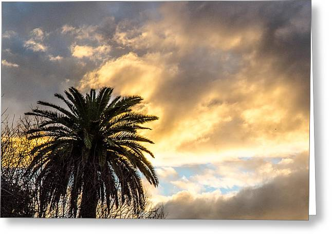 This Is My World - Sunset Greeting Card by Andrea Mazzocchetti