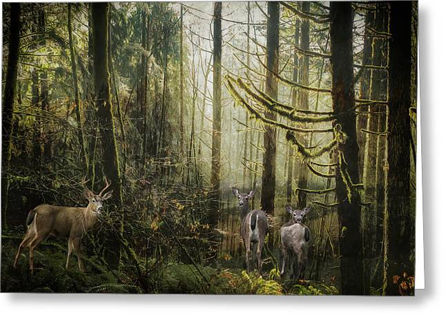 This Is Our Home Greeting Card by Belinda Greb
