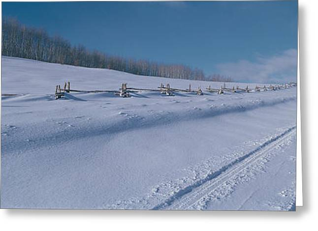 This Is The Last Dollar Road Greeting Card by Panoramic Images