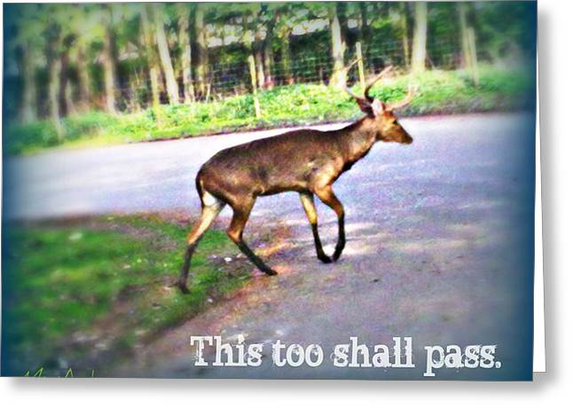 This Too Shall Pass Greeting Card by Miriam Shaw