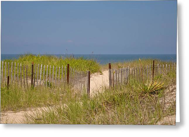 Sand Fences Digital Art Greeting Cards - This Way to the Beach Greeting Card by Bill Cannon