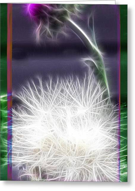 Greeting Card featuring the photograph Thistle by EricaMaxine  Price