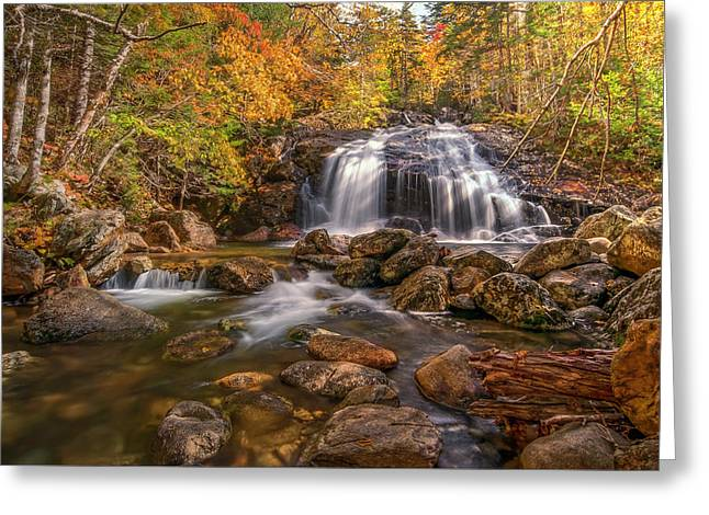 Thompson Falls Greeting Card