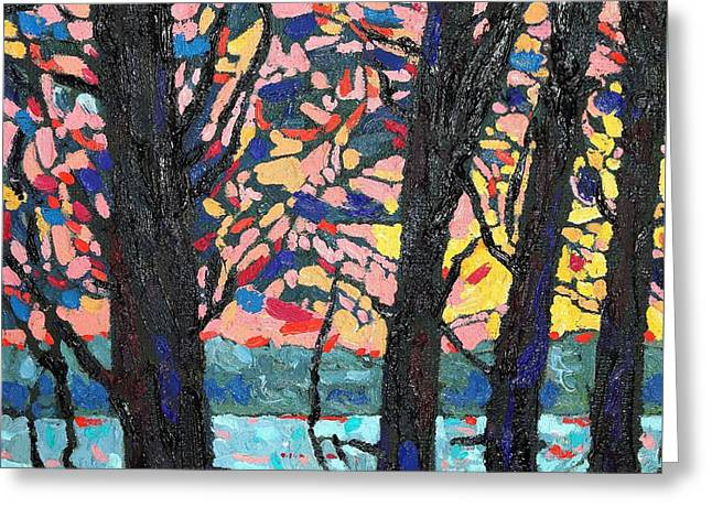 Thomson Trees Greeting Card by Phil Chadwick