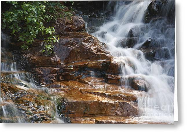 Thoreau Falls - White Mountains New Hampshire  Greeting Card by Erin Paul Donovan