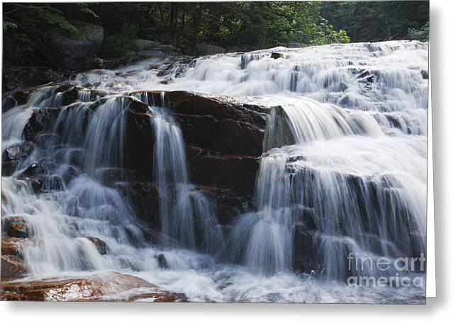 Thoreau Falls - White Mountains New Hampshire Usa Greeting Card by Erin Paul Donovan