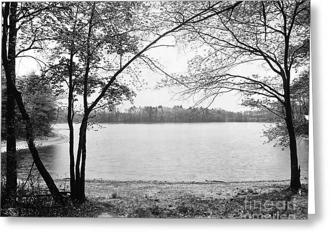 Thoreau's Cove Greeting Card