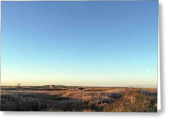 Thornham Marsh Lit By The Setting Sun Greeting Card