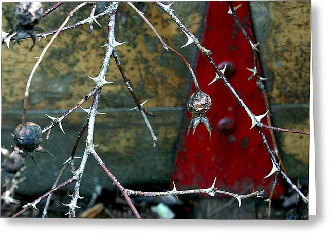 Thorns And Red Triangle Greeting Card
