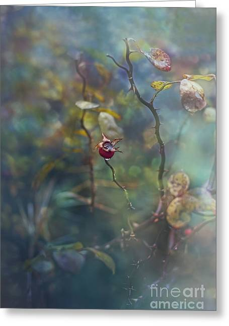Thorns And Roses Greeting Card