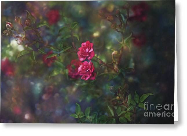 Thorns And Roses II Greeting Card