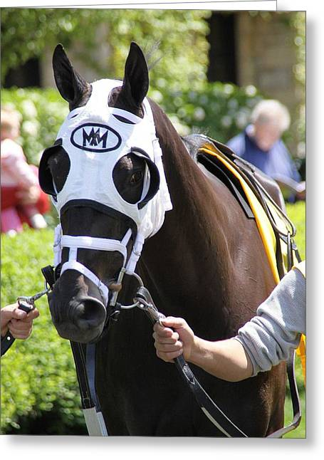 Thoroughbred Before Keeneland Race Greeting Card by George Ferrell