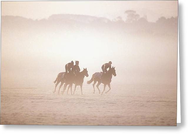 Equestrianism Greeting Cards - Thoroughbred Horses In Training Greeting Card by The Irish Image Collection