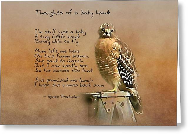 Thoughts Of A Baby Hawk Greeting Card