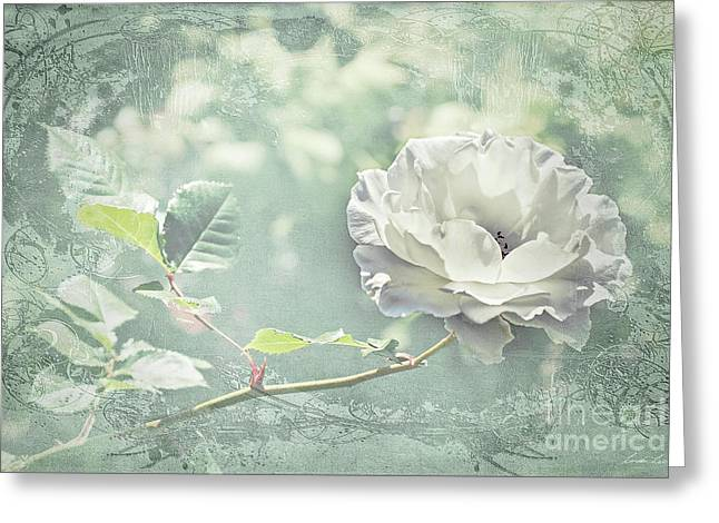 Greeting Card featuring the photograph Thoughts Of You by Linda Lees
