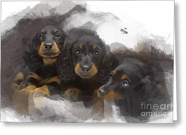 Three Adorable Black And Tan Dachshund Puppies Greeting Card