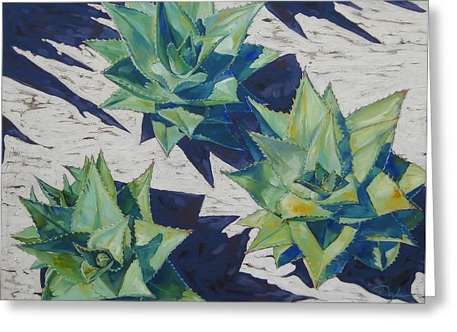 Three Aloe Greeting Card by Karen Doyle