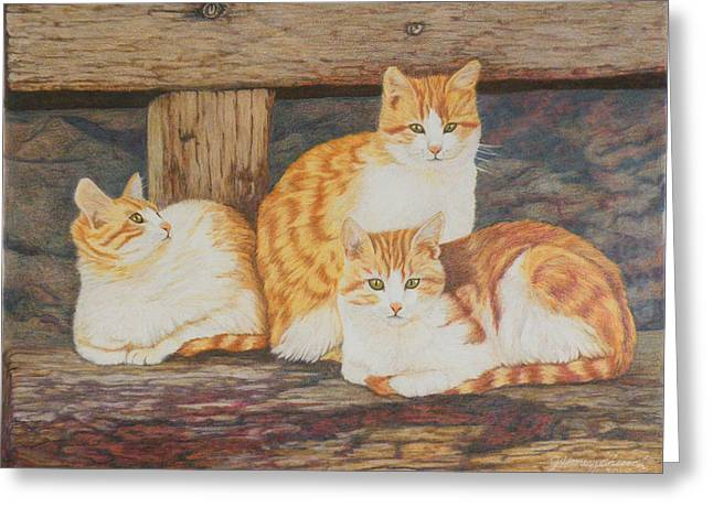 Three Amigos Greeting Card by Judi Honeychurch