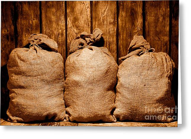 Three Bags In A Warehouse - Sepia Greeting Card