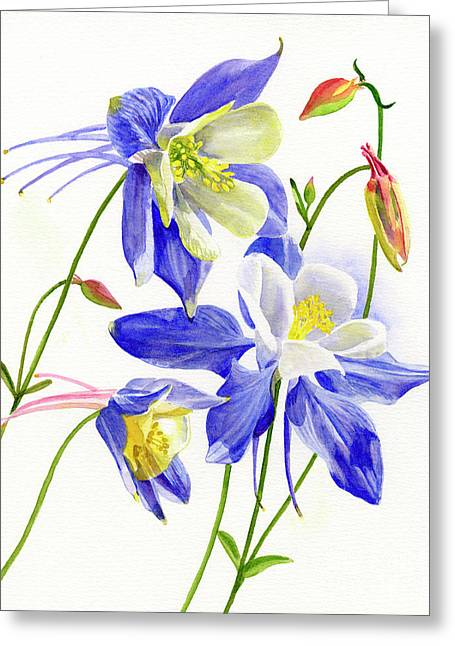 Three Blue Columbine Blossoms Greeting Card by Sharon Freeman