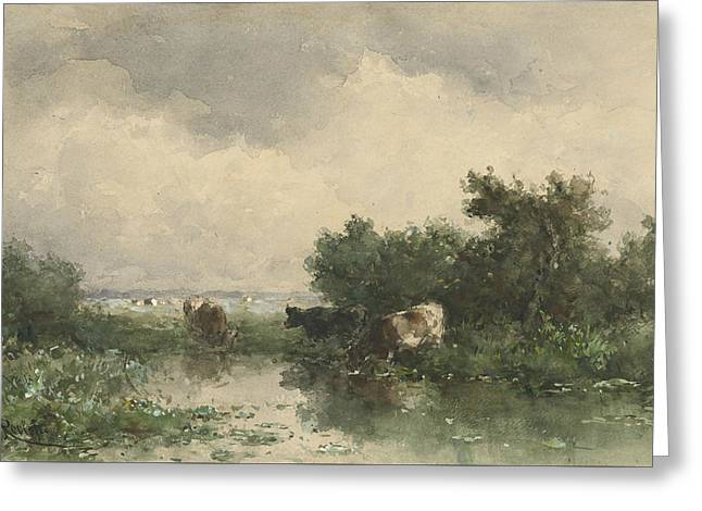 Three Cows At A Pond Greeting Card by Willem Roelofs