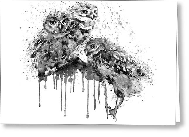 Three Cute Owls Black And White Greeting Card by Marian Voicu