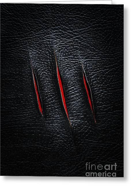 Three Cuts Greeting Card by Carlos Caetano