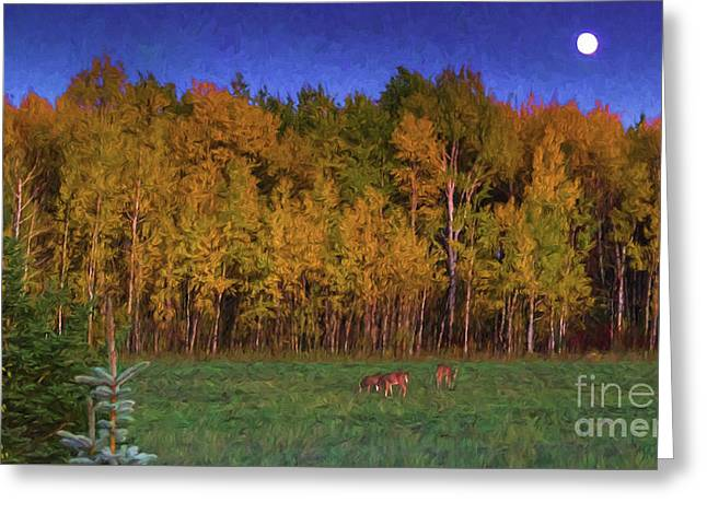 Three Deer And A Moon Greeting Card