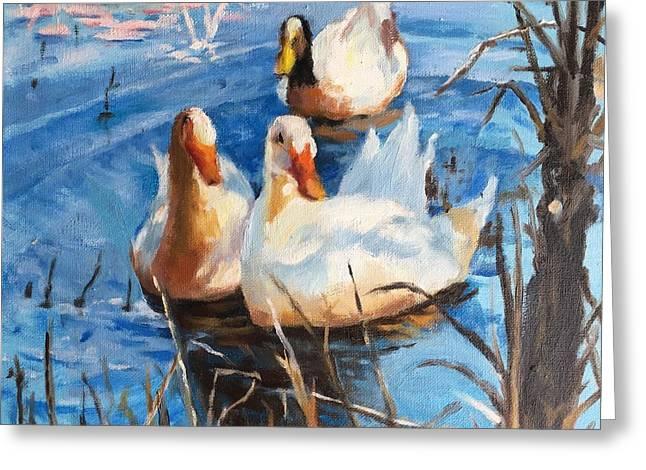 Three Ducks Greeting Card