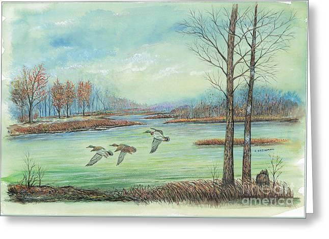 Three Ducks On A Blue Day Greeting Card by Samuel Showman