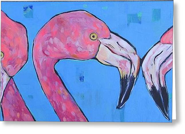 Three Flamingos Greeting Card