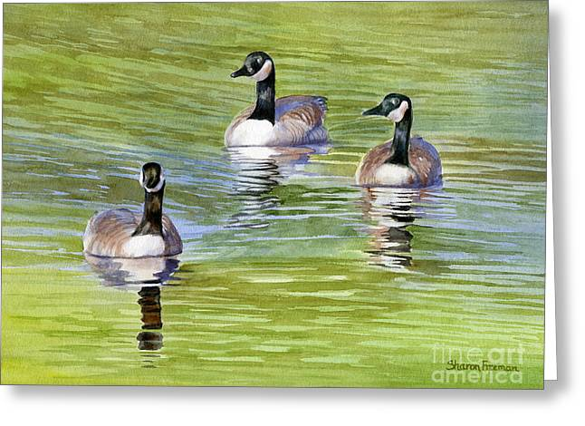 Three Geese With Pond Reflections Greeting Card