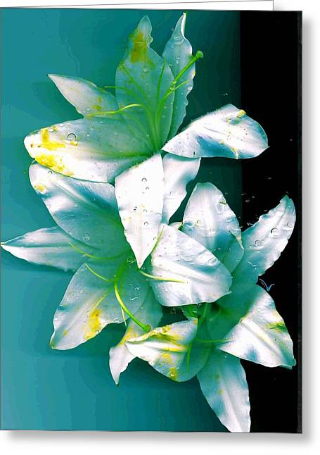 Greeting Card featuring the photograph Three Lilies by Carolyn Repka
