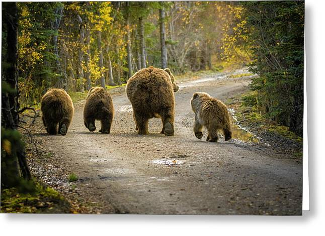 Three Little Bears And Mama Greeting Card