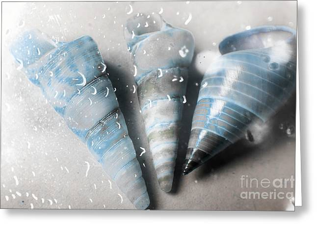 Three Little Trumpet Snail Shells Over Gray Greeting Card by Jorgo Photography - Wall Art Gallery