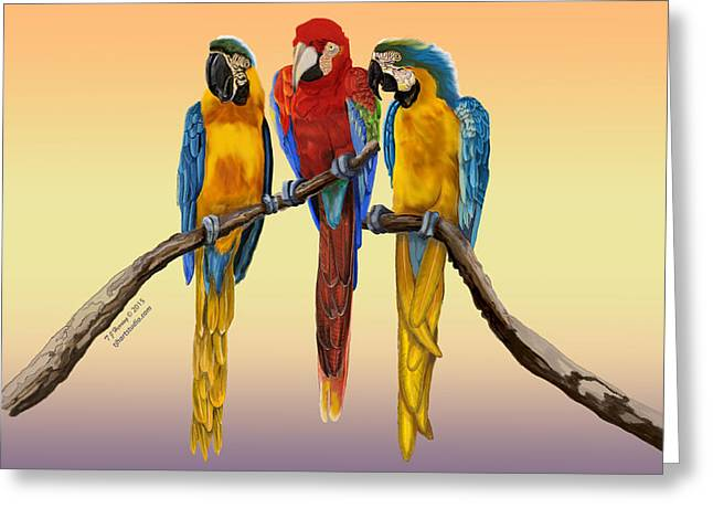 Greeting Card featuring the painting Three Macaws Hanging Out by Thomas J Herring