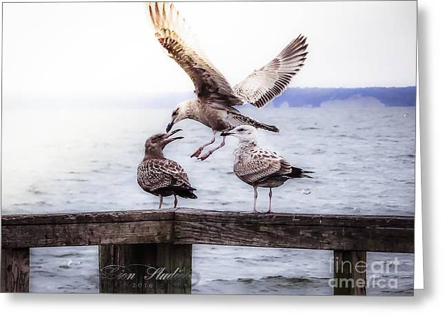 Three Of A Kind Greeting Card by Melissa Messick
