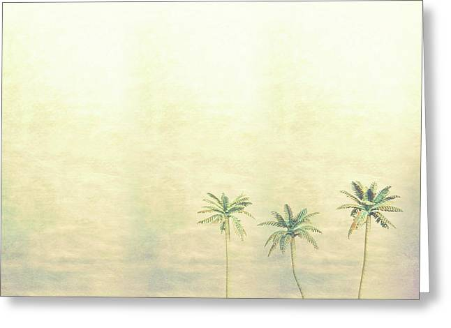 Three Palms In Color Greeting Card