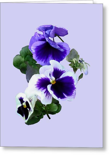Three Purple Pansies In A Row Greeting Card