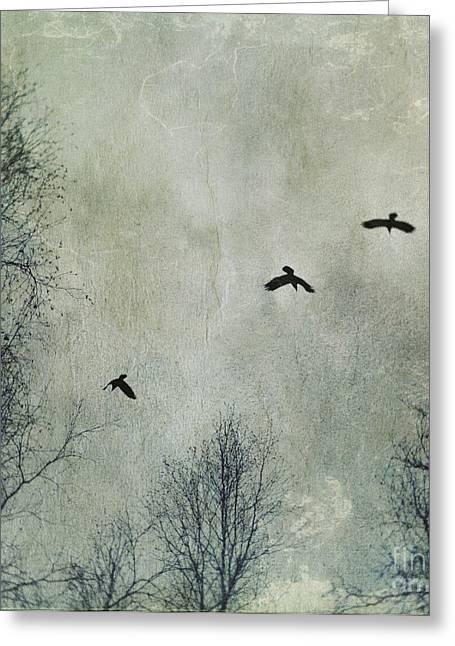 Three Ravens Greeting Card