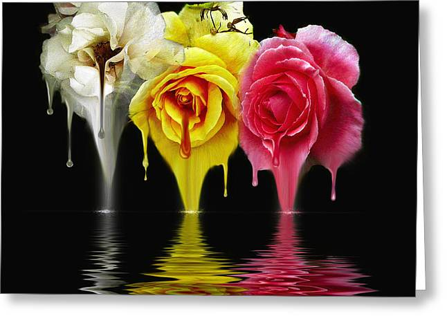 Tears Of Roses Greeting Card